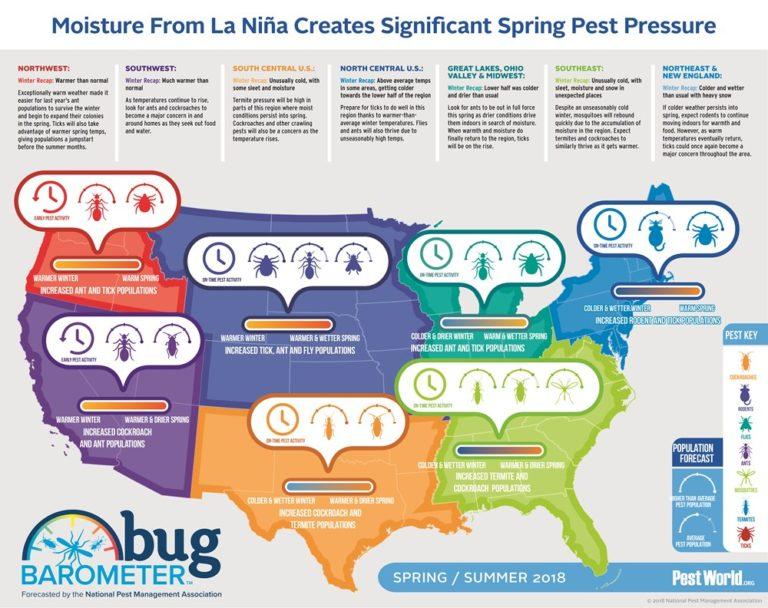 pest-control-infographic-768x608