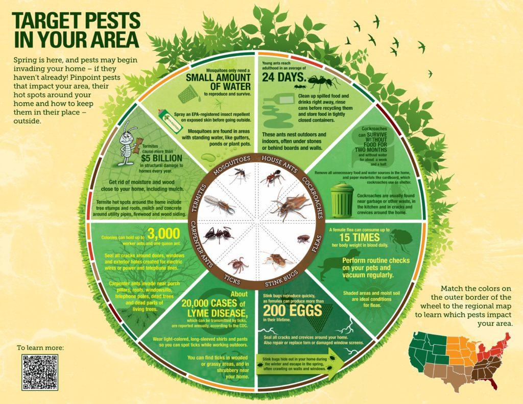 pest-control-infographic-example-1024x791